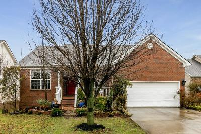 Lexington Single Family Home For Sale: 537 Southpoint Drive
