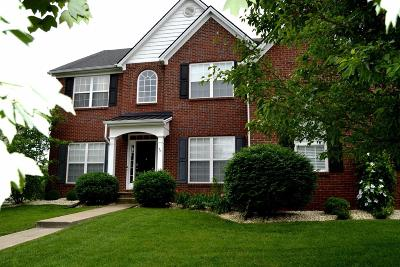 Lexington Single Family Home For Sale: 716 Maidencane Drive