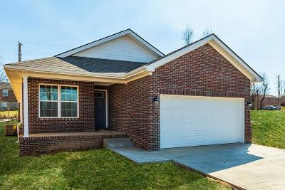 Nicholasville Single Family Home For Sale: 128 Dallas Drive