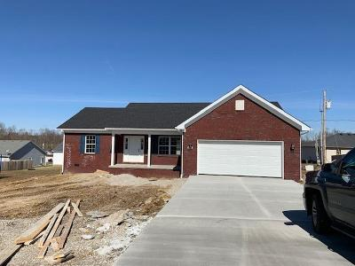 Lawrenceburg Single Family Home For Sale: 1242 Alton Station Road