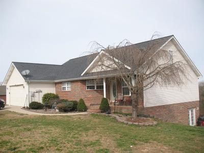 London Single Family Home For Sale: 351 Golden Pond Drive