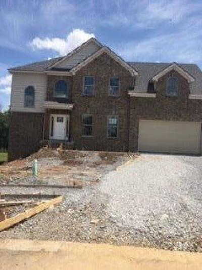 Georgetown Single Family Home For Sale: 177 Inverness Drive