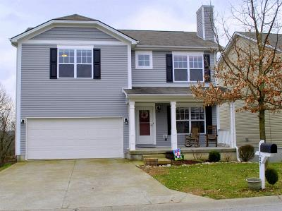 Georgetown Single Family Home For Sale: 127 Meadow View Way
