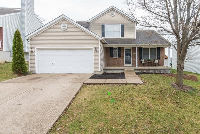 Georgetown Single Family Home For Sale: 104 Dunn Circle