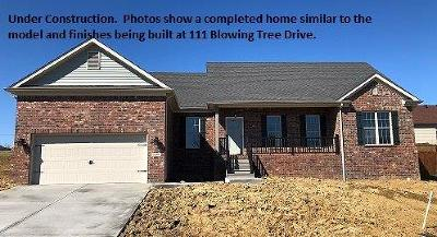 Georgetown Single Family Home For Sale: 111 Blowing Tree Drive