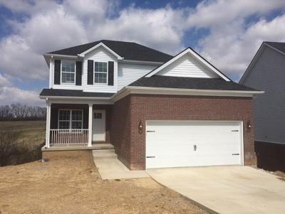 Richmond Single Family Home For Sale: 976 Cobble Drive