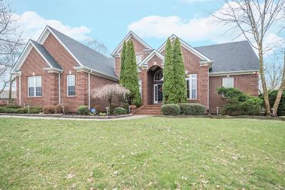 Nicholasville Single Family Home For Sale: 210 Cambridge Lane