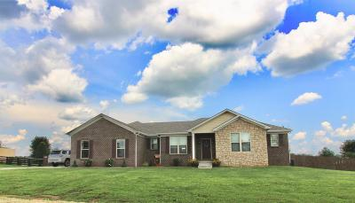 Georgetown Single Family Home For Sale: 102 Brooklane Drive
