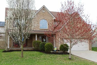 Nicholasville Single Family Home For Sale: 317 Timothy Drive