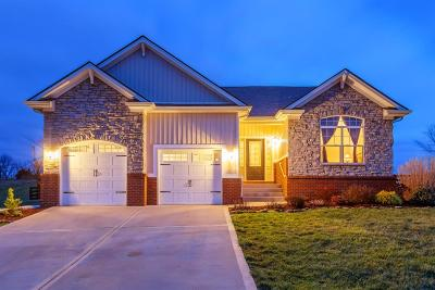 Georgetown Single Family Home For Sale: 167 Village Park Drive