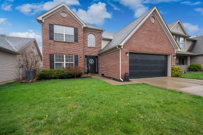 Lexington Single Family Home For Sale: 717 Rosslyns Dale