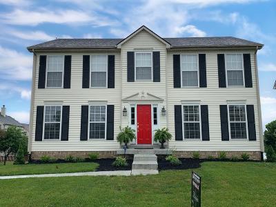 Georgetown Single Family Home For Sale: 306 General John Payne Boulevard