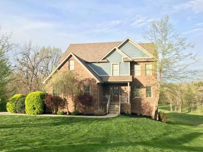 Single Family Home For Sale: 237 Wildcat Drive