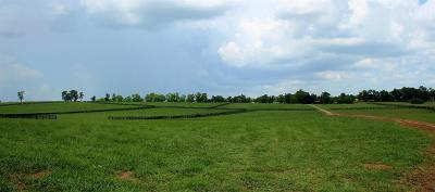 Anderson County, Fayette County, Franklin County, Henry County, Scott County, Shelby County, Woodford County Farm For Sale: 1215 Stamping Ground Road #LOT 2