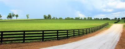 Anderson County, Fayette County, Franklin County, Henry County, Scott County, Shelby County, Woodford County Farm For Sale: 1273 Stamping Ground Road #LOT 5