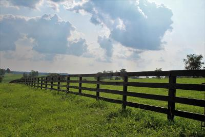 Anderson County, Fayette County, Franklin County, Henry County, Scott County, Shelby County, Woodford County Farm For Sale: 1373 Stamping Ground Road