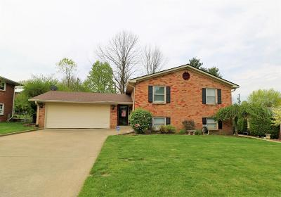 Lexington Single Family Home For Sale: 1895 Gayle Drive