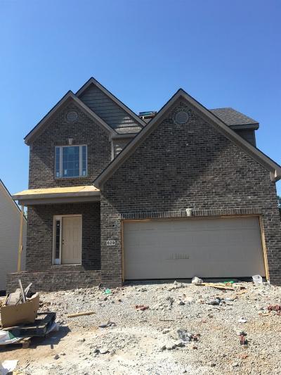 Lexington Single Family Home For Sale: 629 Lucille Drive