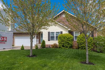 Clark County Single Family Home For Sale: 306 Foxglove