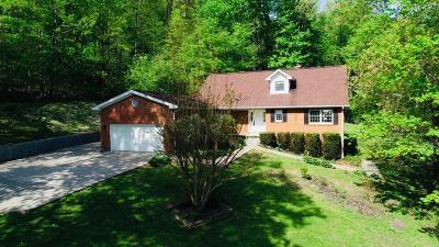 Williamsburg Single Family Home For Sale: 663 Red Bird Road