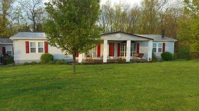 Cynthiana Single Family Home For Sale: 3201 Ky.hwy 1284 E