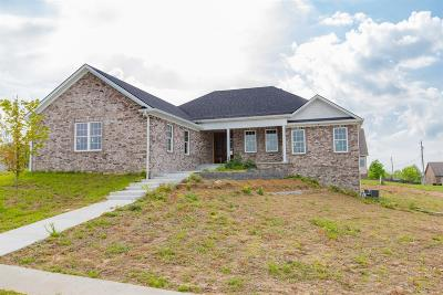 Wilmore Single Family Home For Sale: 101 Witts Lane