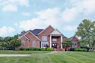 Single Family Home For Sale: 2425 Williamsburg Estates Lane