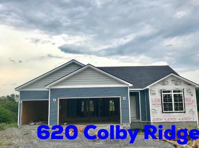 Winchester Single Family Home For Sale: 620 Colby Ridge Boulevard
