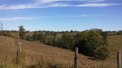 Anderson County, Fayette County, Franklin County, Henry County, Scott County, Shelby County, Woodford County Farm For Sale: 6 Stone Lane