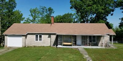 Lawrenceburg Single Family Home For Sale: 2068 Ballard Road
