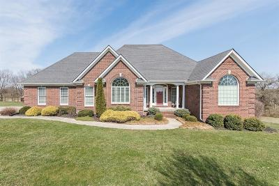 Nicholasville Single Family Home For Sale: 100 Muir Field Drive