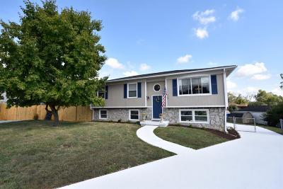 Lexington Single Family Home For Sale: 604 Tundra