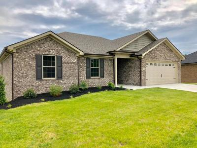 Richmond Single Family Home For Sale: 316 Southern Aster Trail
