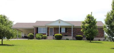 Danville Single Family Home For Sale: 5133 Lebanon Road