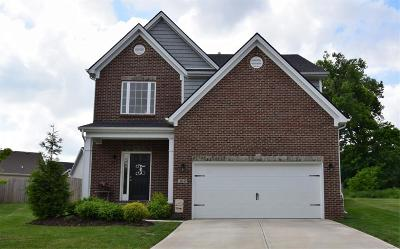 Georgetown Single Family Home For Sale: 102 Waterside Drive