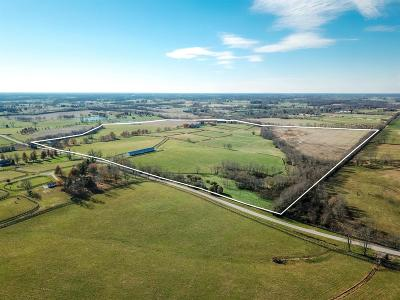 Anderson County, Fayette County, Franklin County, Henry County, Scott County, Shelby County, Woodford County Farm For Sale: 6001 Greenwich Pike