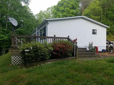 Barbourville Single Family Home For Sale: 145 Copper Ridge Drive