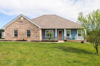 Richmond Single Family Home For Sale: 227 Tazwell Drive