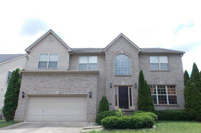 Single Family Home For Sale: 228 Bittersweet Way