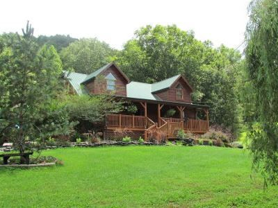 Berea Single Family Home For Sale: 1836 Red Lick Road