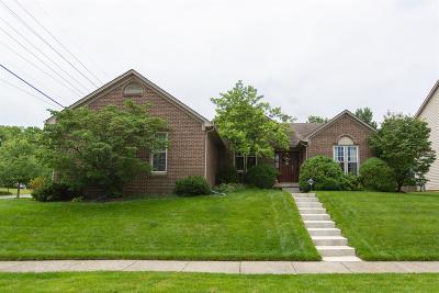 Single Family Home For Sale: 2372 Hartland Parkside Drive