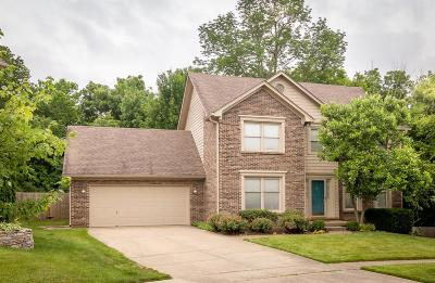 Single Family Home For Sale: 4012 Brookwater Court
