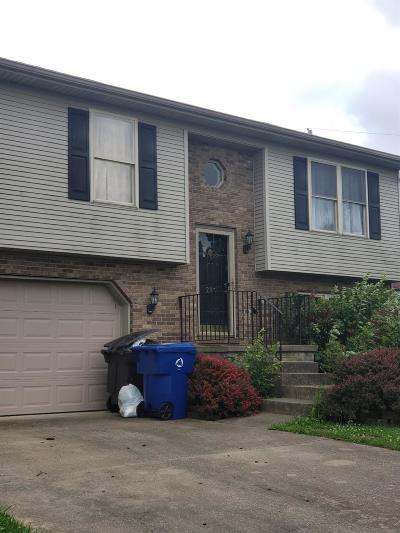Single Family Home For Sale: 213 Lindsey Court