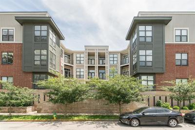 Lexington Condo/Townhouse For Sale: 250 S Martin Luther King Boulevard #117