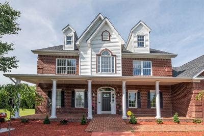 Georgetown Single Family Home For Sale: 338 Carrick Pike
