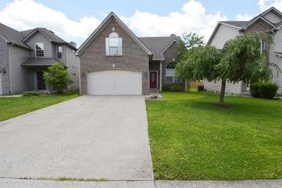 Lexington Single Family Home For Sale: 2960 Polo Club Boulevard