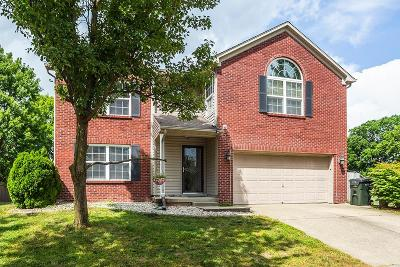 Lexington Single Family Home For Sale: 1176 Lacy Lane