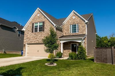 Lexington Single Family Home For Sale: 1881 Rachels Run