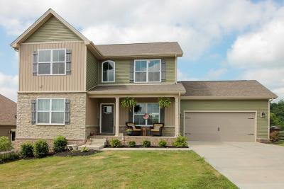 Georgetown Single Family Home For Sale: 128 Westwoods Drive