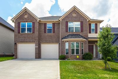 Lexington Single Family Home For Sale: 3266 Tranquility Point